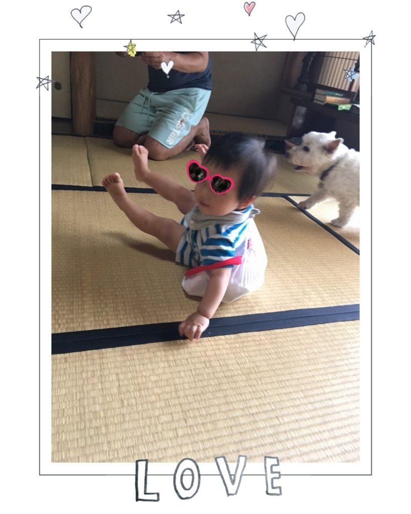 f:id:fuwafu-wanko:20170719135141j:plain