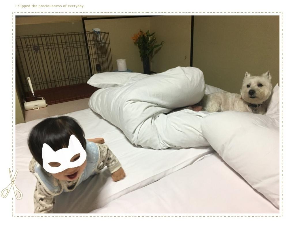 f:id:fuwafu-wanko:20170828140047j:plain