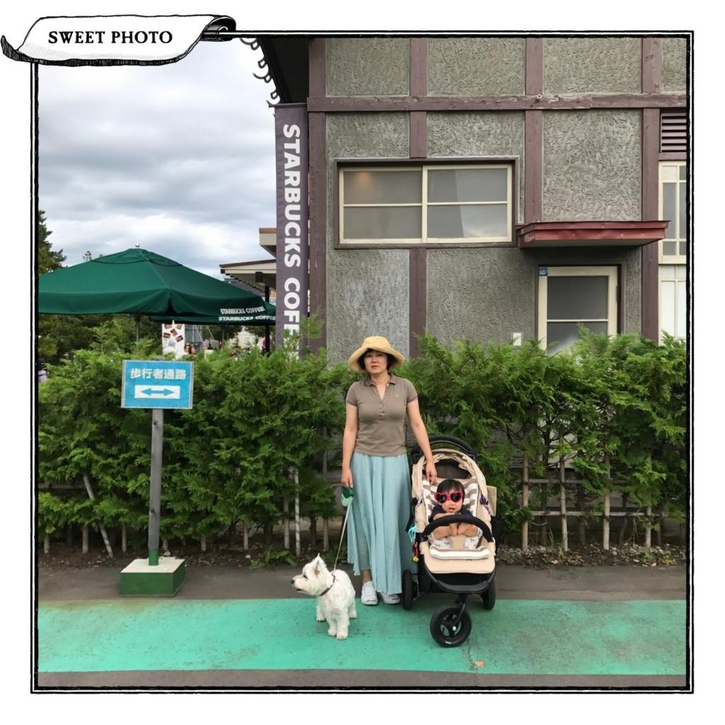 f:id:fuwafu-wanko:20170904231149j:plain