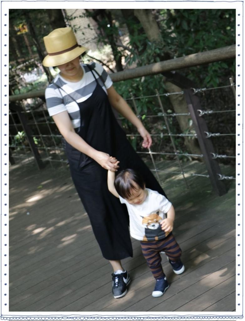 f:id:fuwafu-wanko:20170912214901j:plain