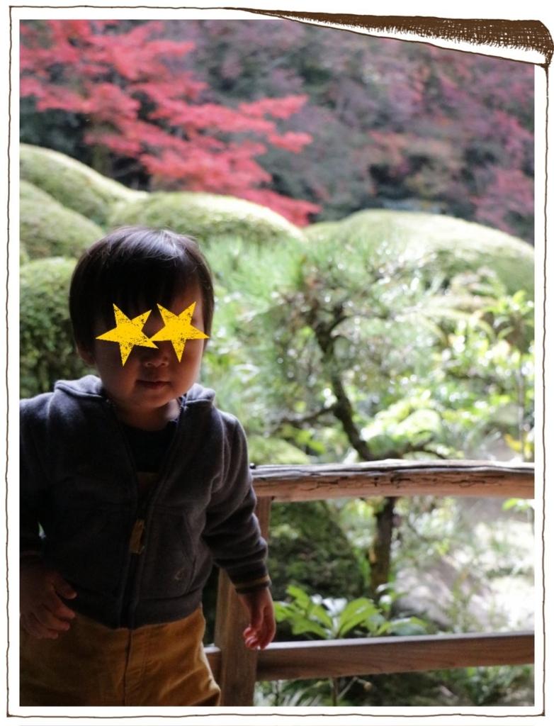 f:id:fuwafu-wanko:20171123211316j:plain