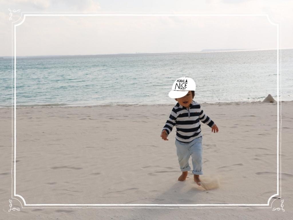 f:id:fuwafu-wanko:20180109222701j:plain