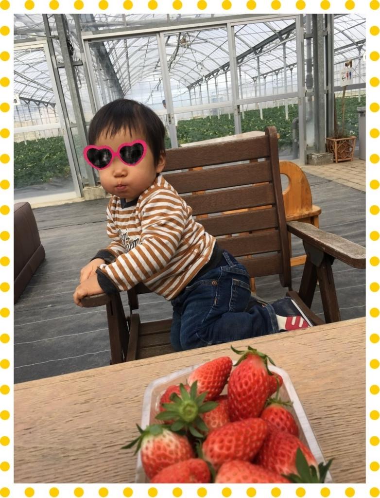 f:id:fuwafu-wanko:20180203233055j:plain
