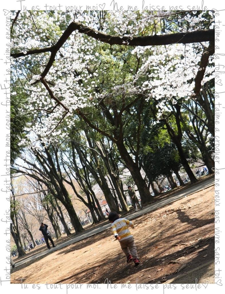 f:id:fuwafu-wanko:20180403001113j:plain