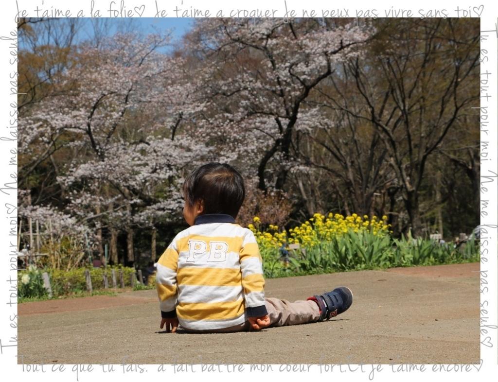 f:id:fuwafu-wanko:20180403001644j:plain
