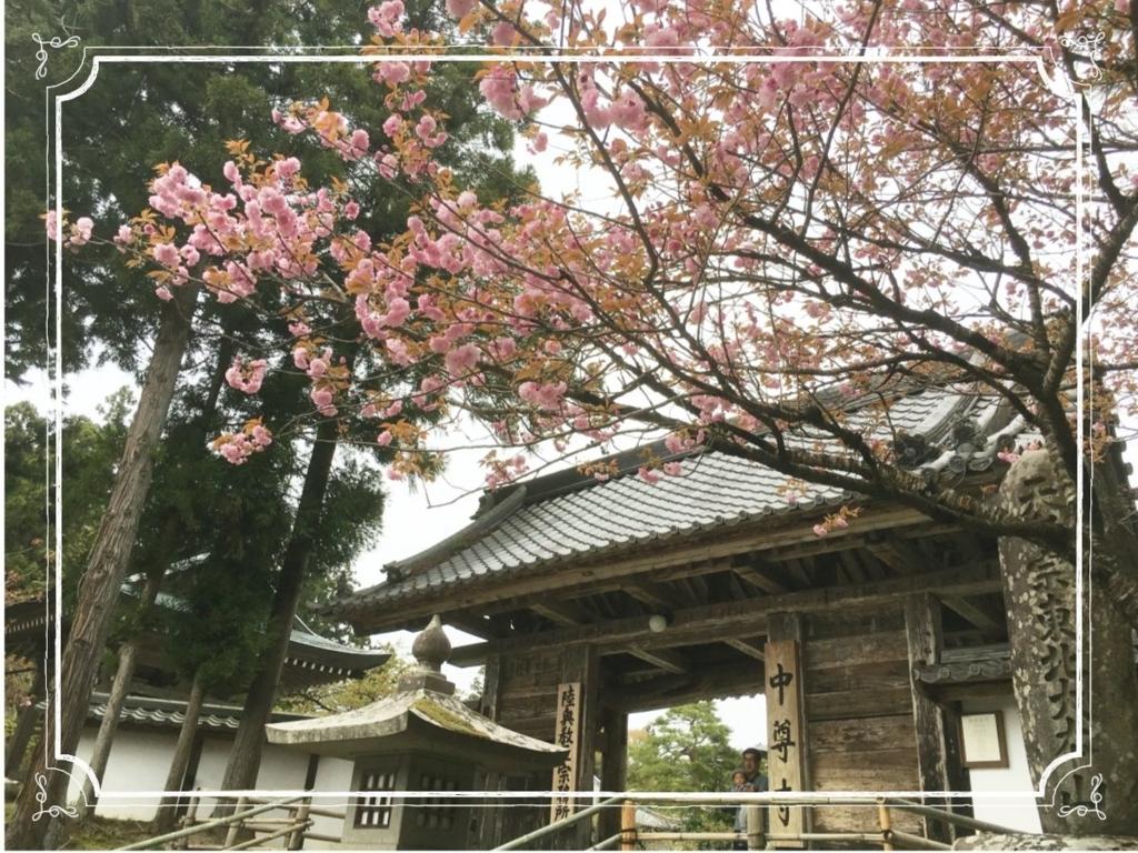 f:id:fuwafu-wanko:20180506222118j:plain