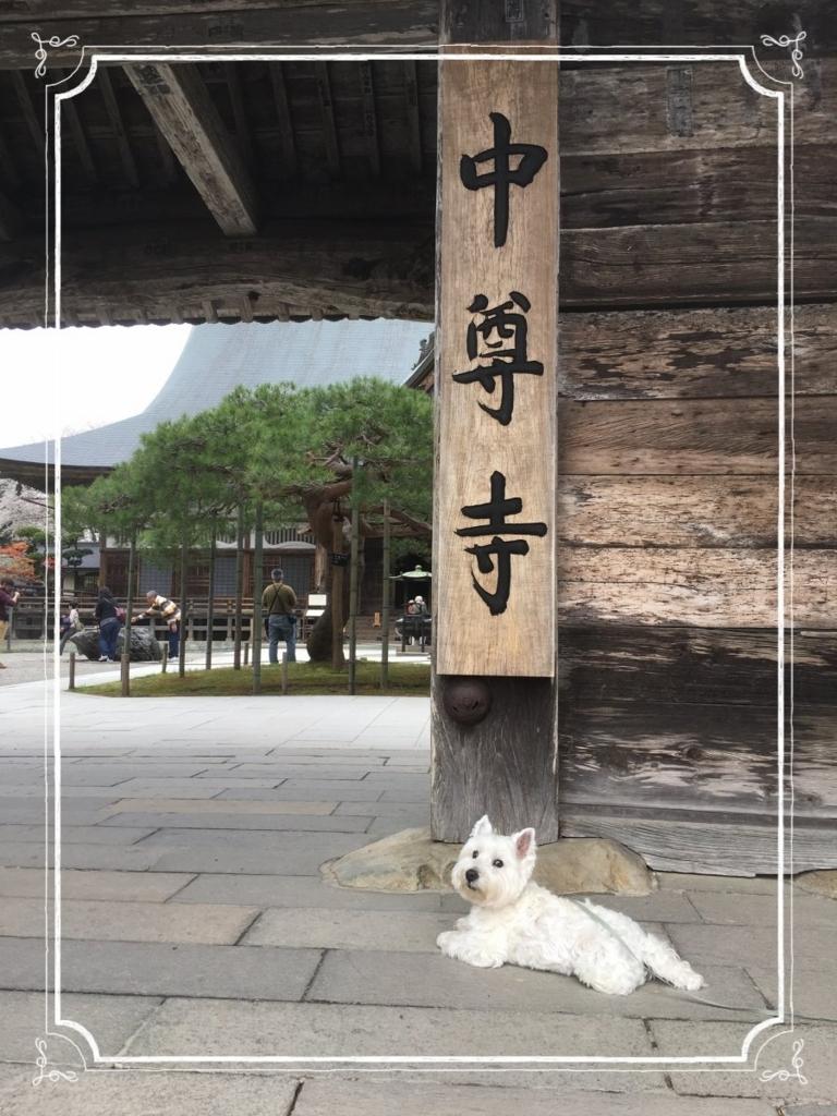 f:id:fuwafu-wanko:20180506223044j:plain