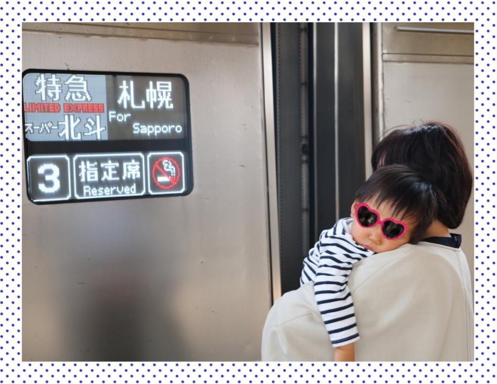 f:id:fuwafu-wanko:20180509121807j:plain