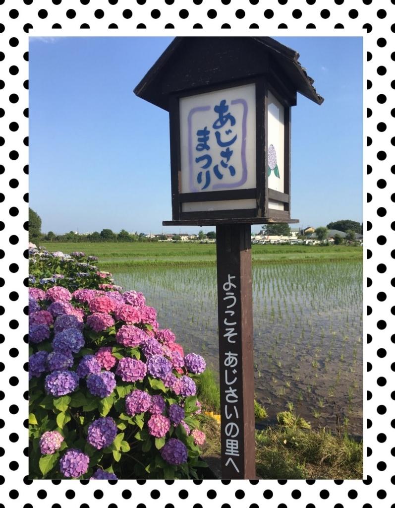 f:id:fuwafu-wanko:20180715213112j:plain