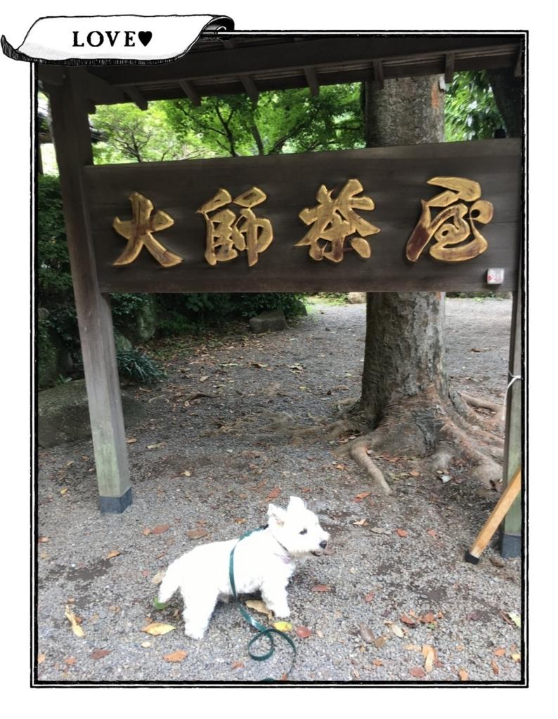 f:id:fuwafu-wanko:20180811161405j:plain