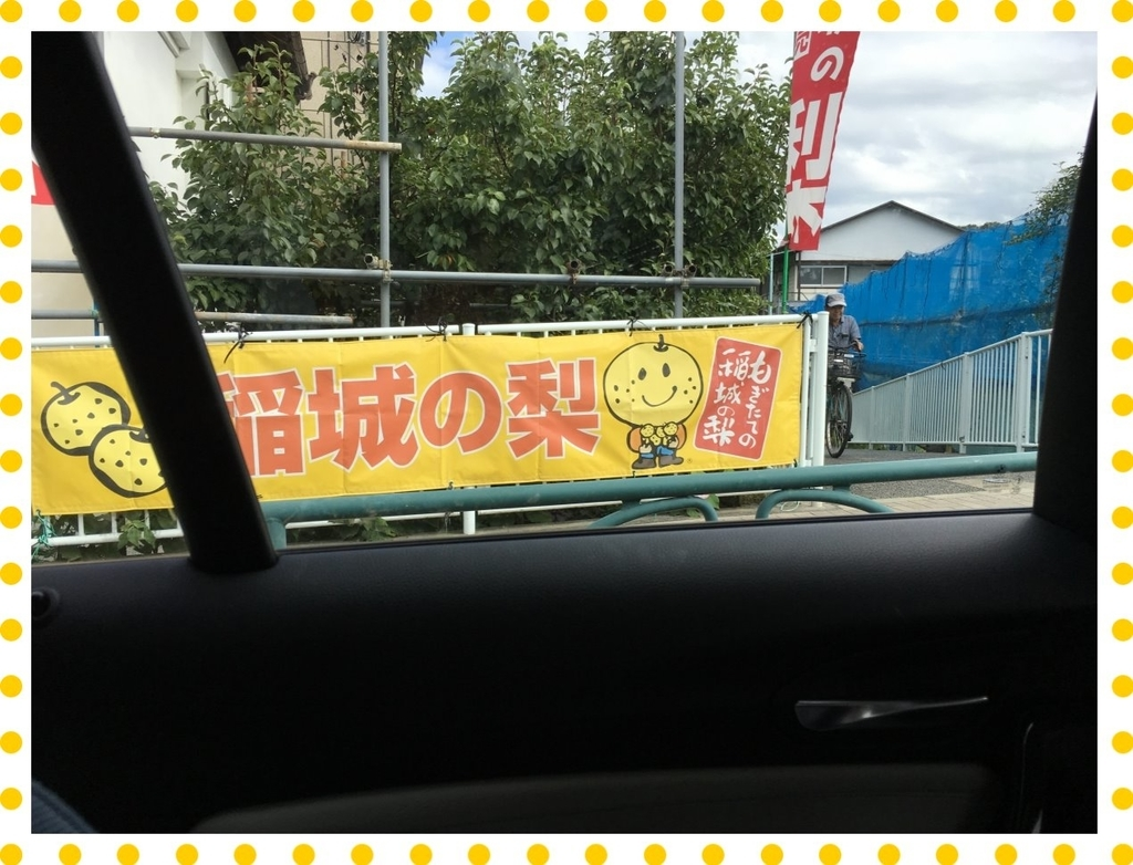f:id:fuwafu-wanko:20181005215737j:plain