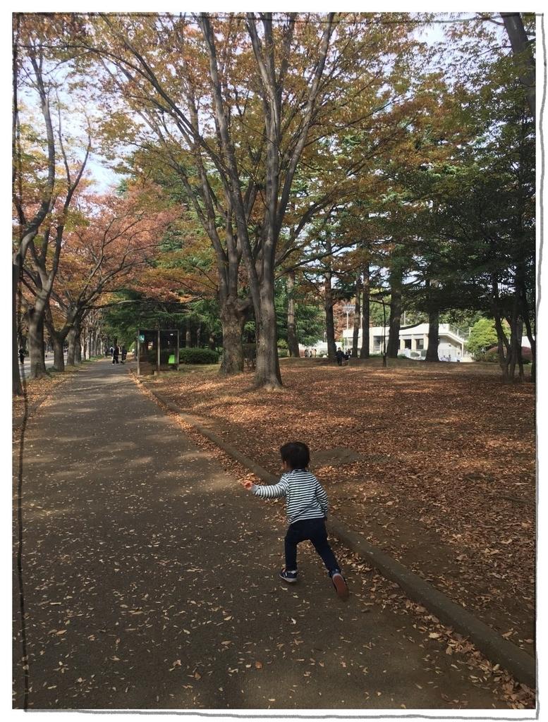 f:id:fuwafu-wanko:20181128215010j:plain