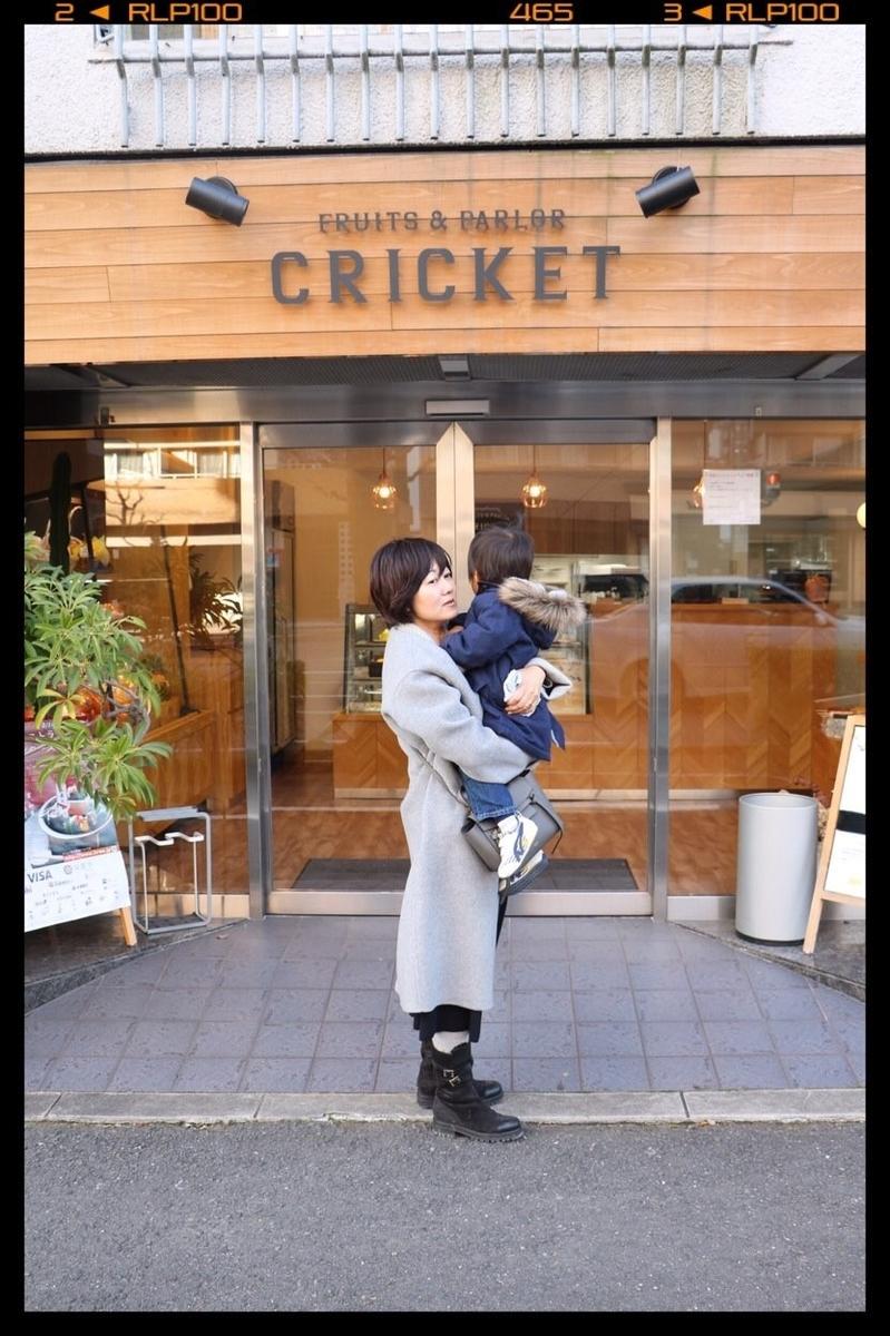 f:id:fuwafu-wanko:20190416231526j:plain
