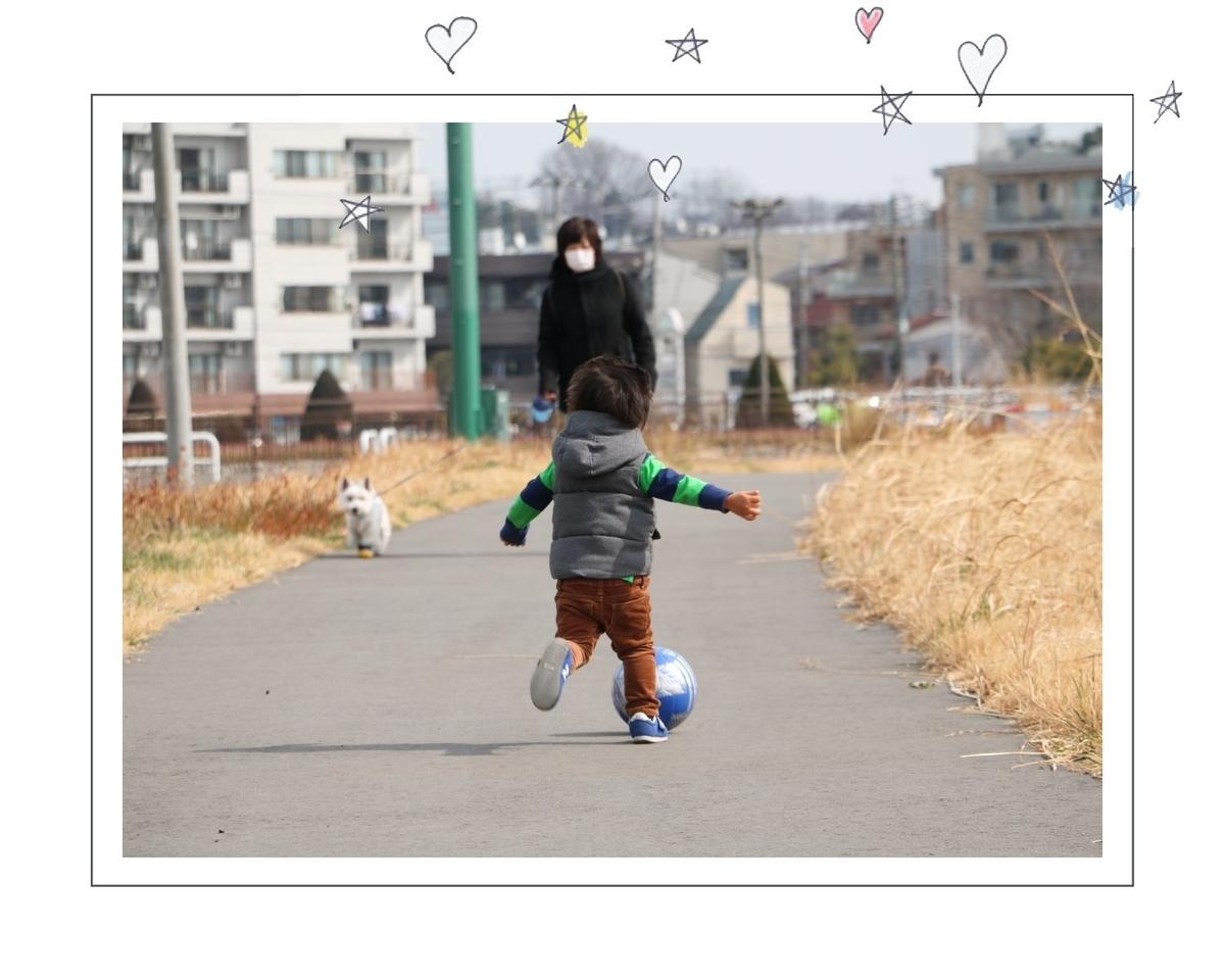 f:id:fuwafu-wanko:20190424232250j:plain