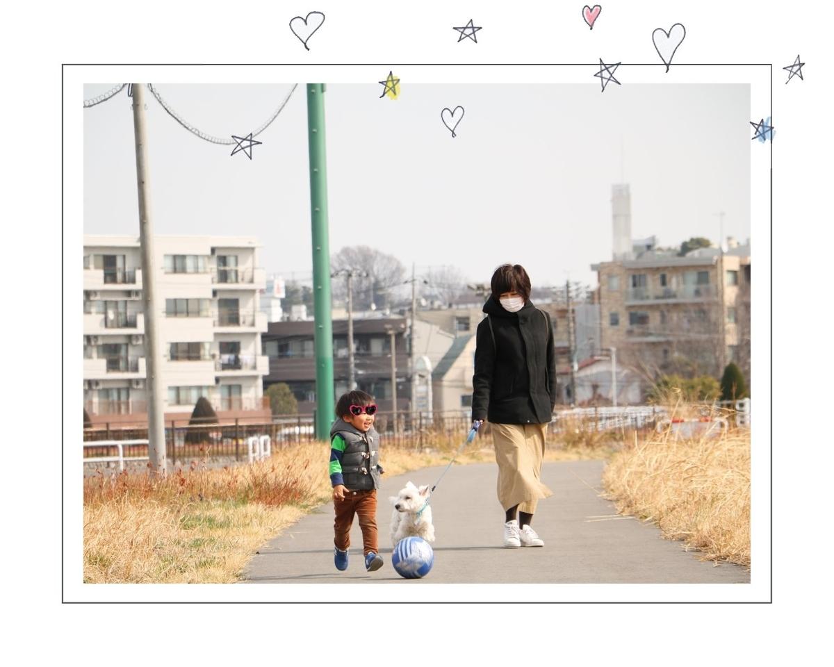 f:id:fuwafu-wanko:20190424232427j:plain