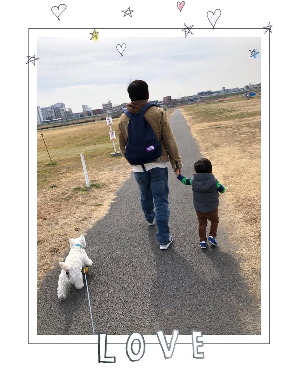 f:id:fuwafu-wanko:20190424233303j:plain