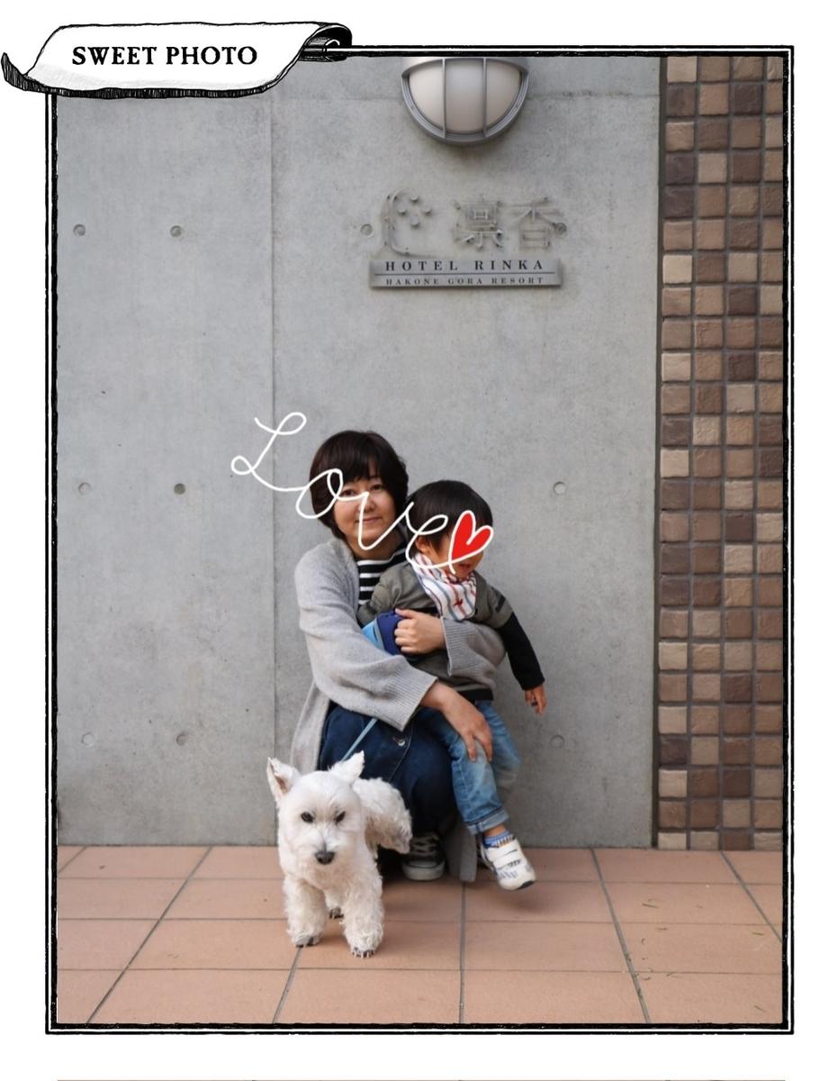 f:id:fuwafu-wanko:20190526231825j:plain