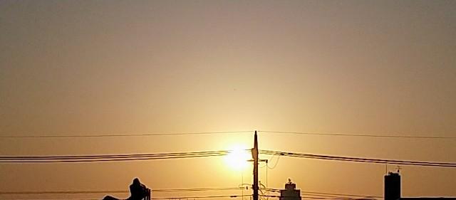 f:id:fuwafuwa5:20210412125640j:image