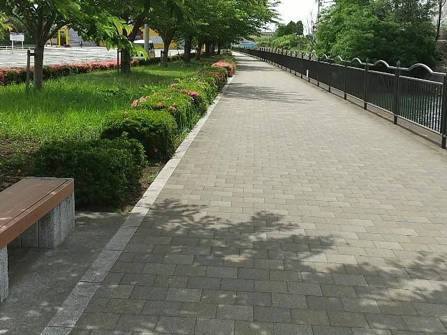 f:id:fuwafuwa5:20210526154909j:image