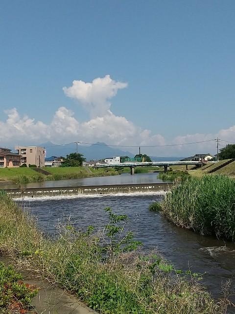 f:id:fuwafuwa5:20210615133813j:image