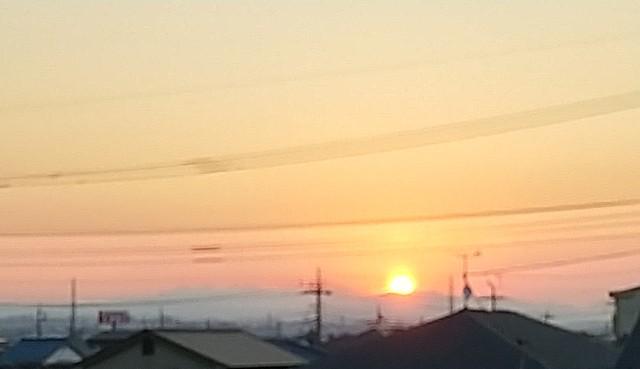 f:id:fuwafuwa5:20210722052128j:image