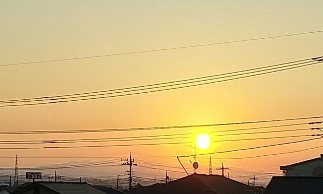 f:id:fuwafuwa5:20210722052148j:image