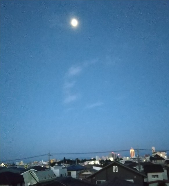 f:id:fuwafuwa5:20210924051918j:image