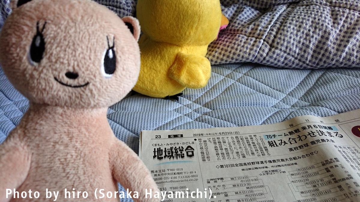 f:id:fuwafuwaame:20190703134404j:plain