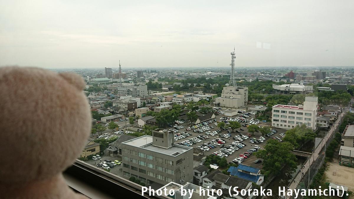f:id:fuwafuwaame:20190706162713j:plain