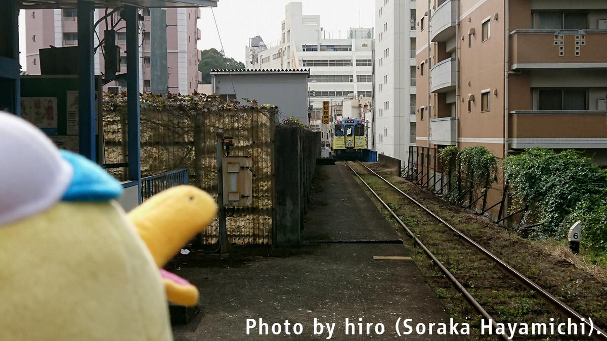f:id:fuwafuwaame:20191118131627j:plain