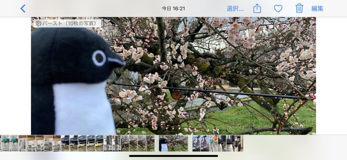 f:id:fuwafuwaame:20200129173451p:plain