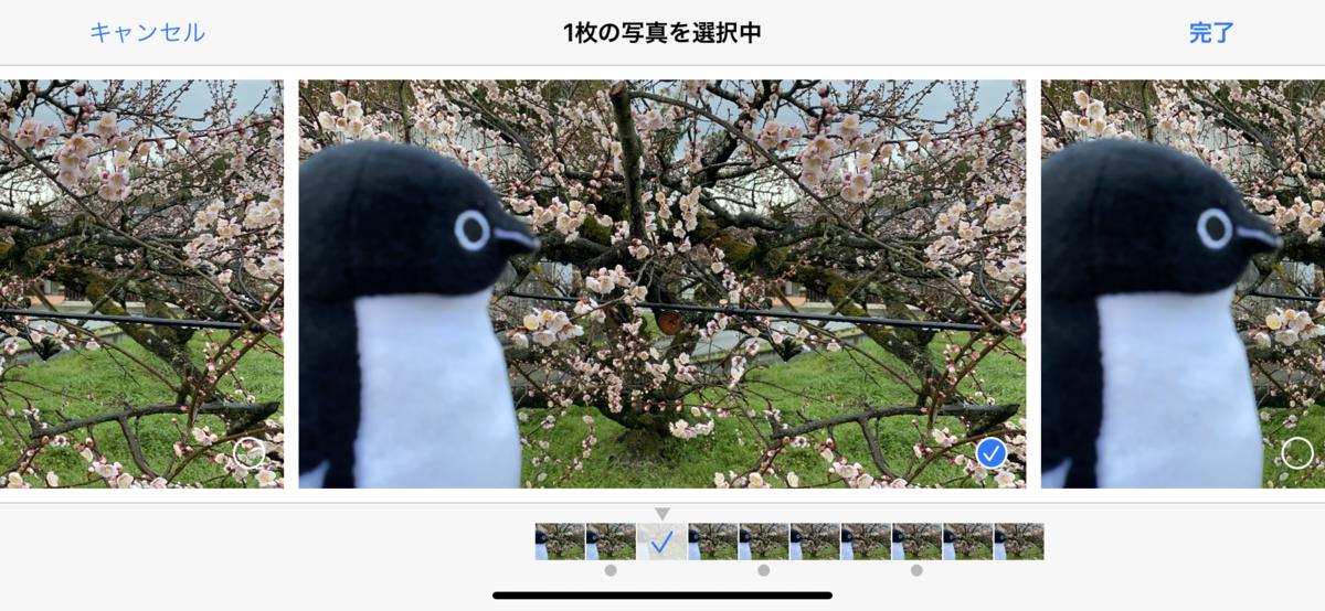 f:id:fuwafuwaame:20200129173613p:plain