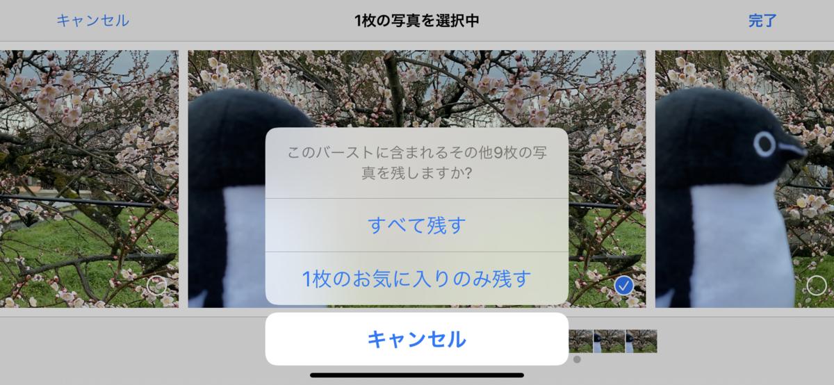 f:id:fuwafuwaame:20200129173652p:plain