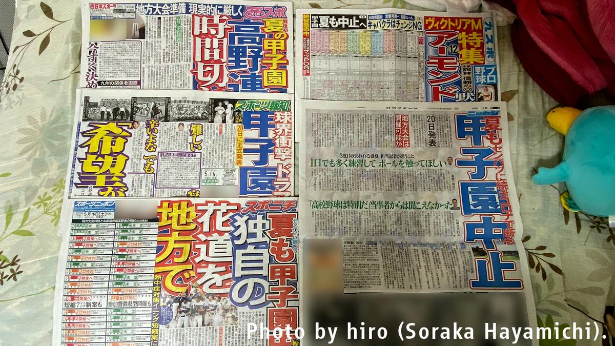 f:id:fuwafuwaame:20200516131215j:plain