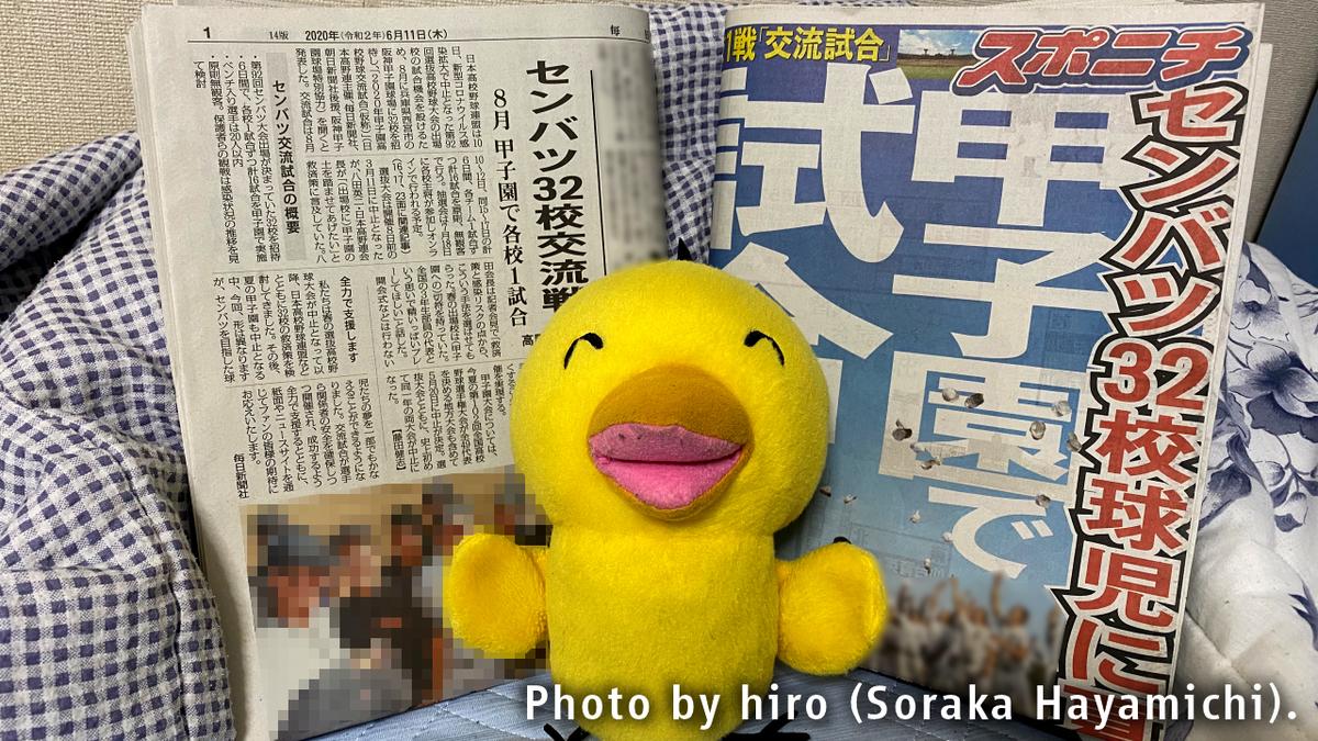 f:id:fuwafuwaame:20200611113059j:plain
