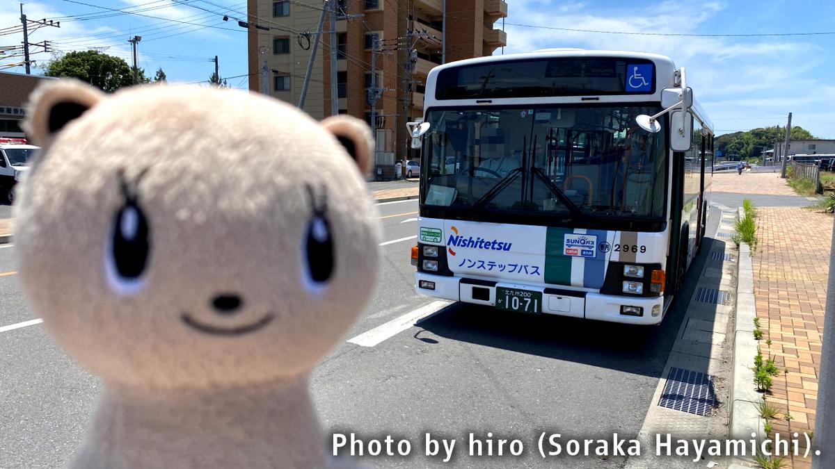 f:id:fuwafuwaame:20200620125726j:plain