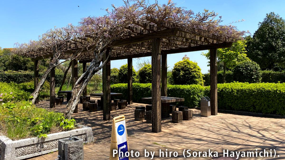 f:id:fuwafuwaame:20200924191138j:plain