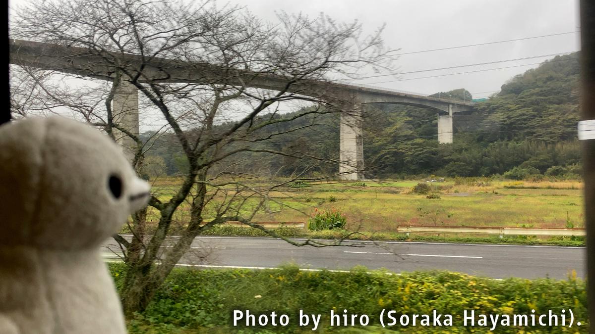 f:id:fuwafuwaame:20201109170541j:plain