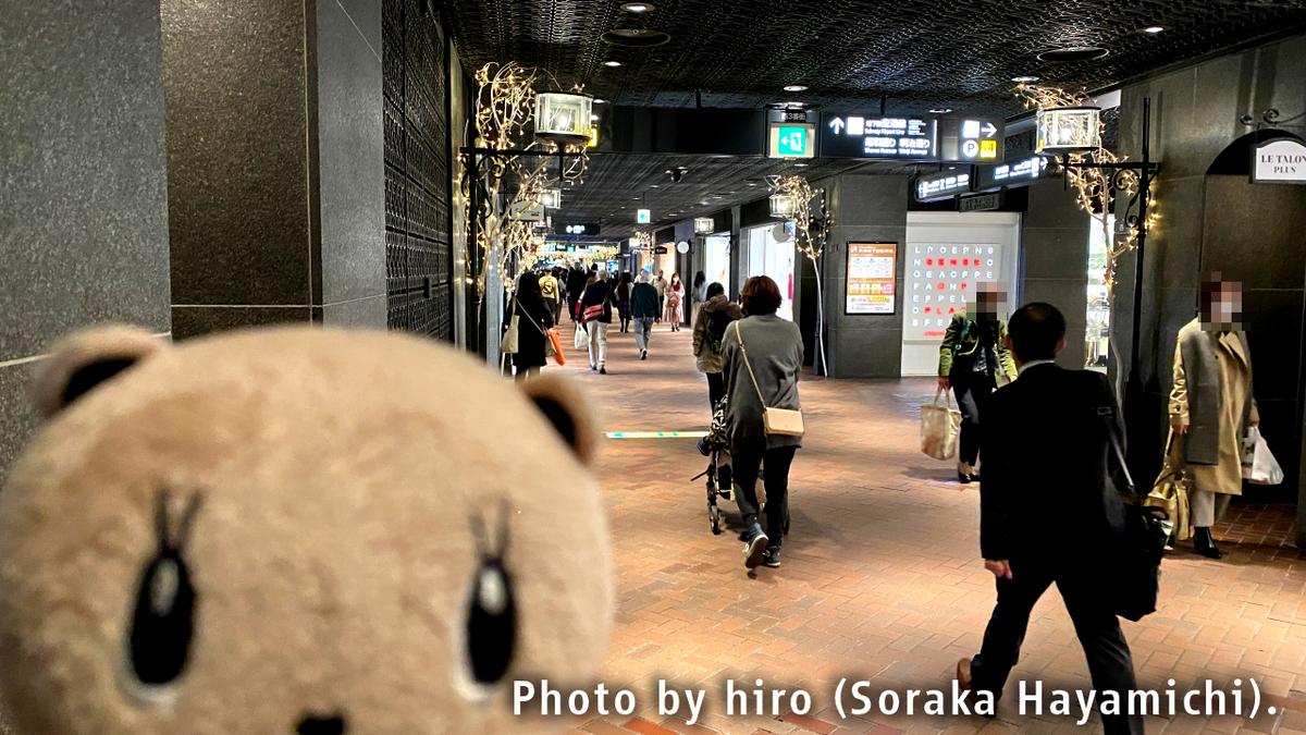 f:id:fuwafuwaame:20201111183850j:plain