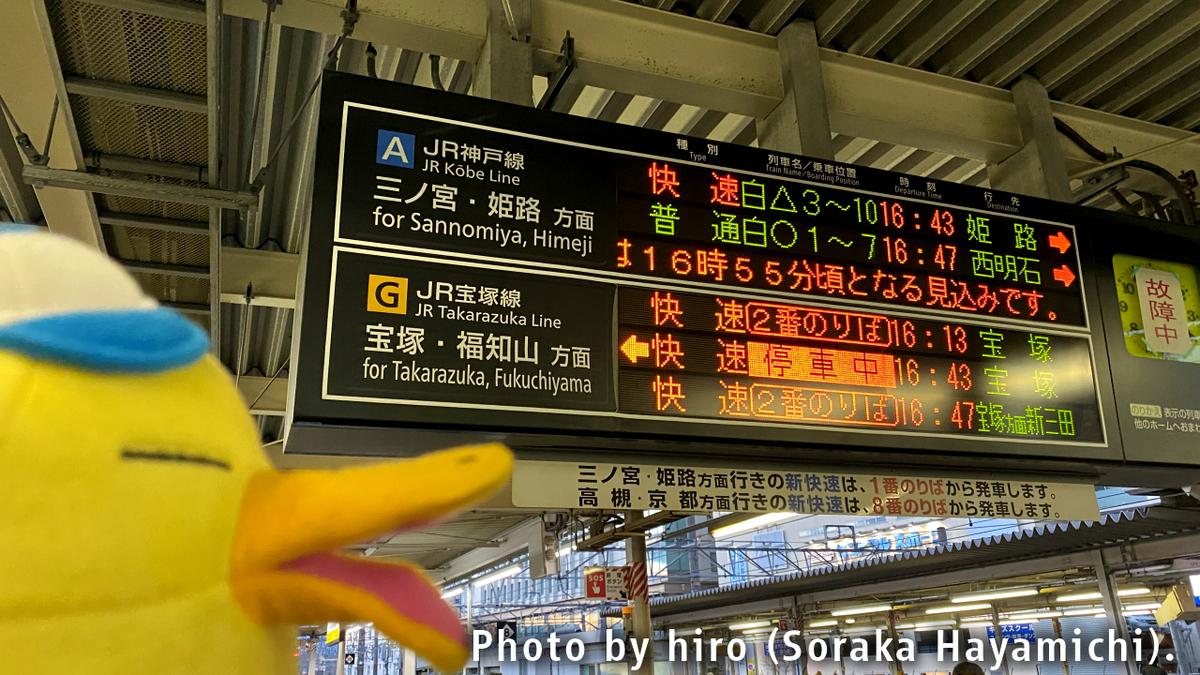 f:id:fuwafuwaame:20210203115126j:plain
