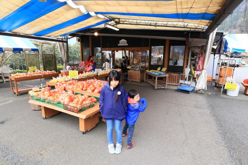 f:id:fuwafuwataro:20170401211907j:plain