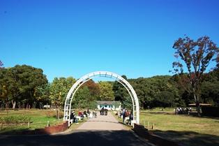 f:id:fuwakudejokyo:20121119013559j:image