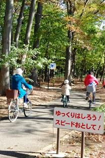 f:id:fuwakudejokyo:20121119013632j:image