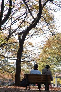 f:id:fuwakudejokyo:20121119013740j:image