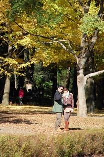 f:id:fuwakudejokyo:20121119013741j:image