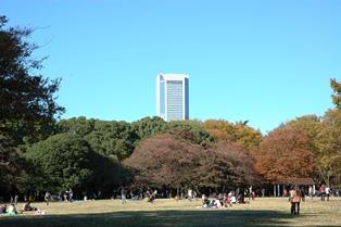 f:id:fuwakudejokyo:20121119013829j:image