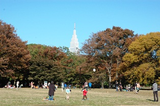 f:id:fuwakudejokyo:20121119013830j:image