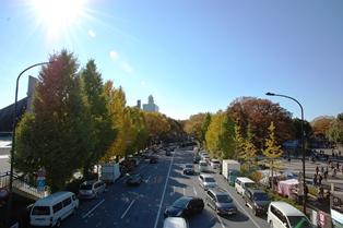 f:id:fuwakudejokyo:20121119013934j:image