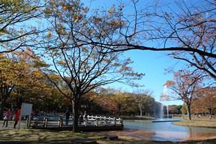 f:id:fuwakudejokyo:20121119013935j:image