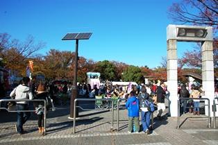 f:id:fuwakudejokyo:20121119014107j:image